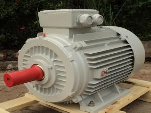 Động cơ điện 3 pha Enertech ESA 0.55kW 4P