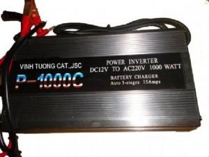 Máy kích điện P1000C